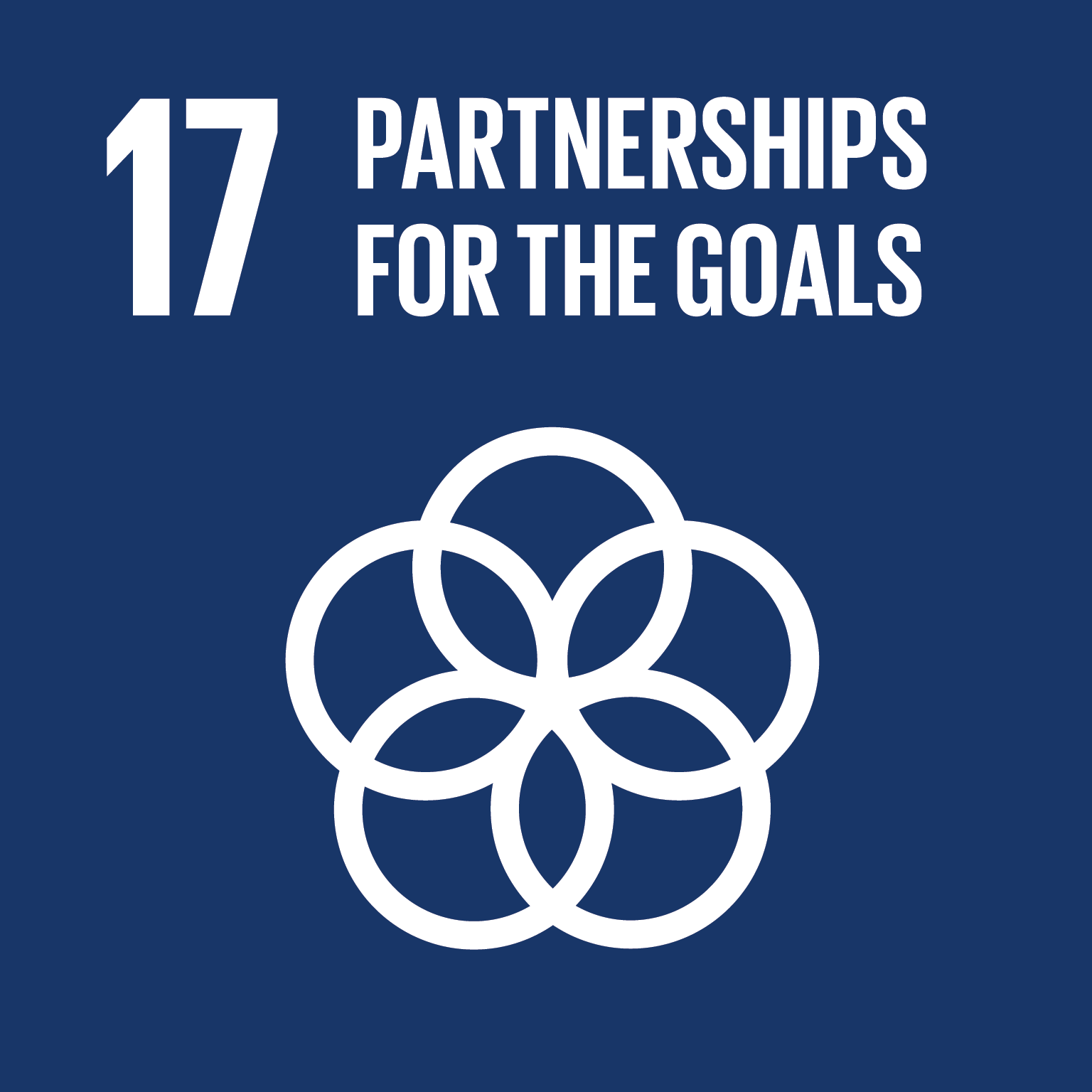 SDG goals 17 partnerships for the goals
